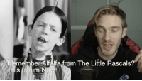 Little Rascals, Him, and The Little Rascals: Remember Alfalfa from The Little Rascals?  This is him Now!