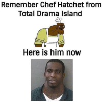 Chef: Remember Chef Hatchet from  Total Drama Island  Sp  Here is him now