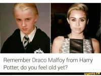 Harry Potter Cameraman : Remember draco malfoy from harry potter do you feel old yet? tfunnyc