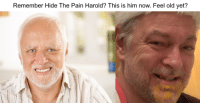 Harold: Remember Hide The Pain Harold? This is him now. Feel old yet?