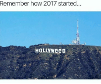 Hollyweed: Remember how 2017 started.  HOLLYweeD