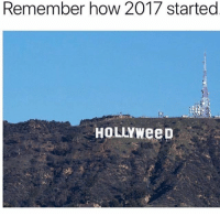 Follow @storchlabs for dank posts: Remember how 2017 started  HOLLYWeeD Follow @storchlabs for dank posts