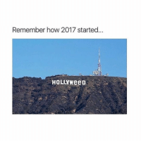 Lowkey sad that 2017 is coming to an end, imma go cry: Remember how 2017 started  HOLLYWeeD Lowkey sad that 2017 is coming to an end, imma go cry
