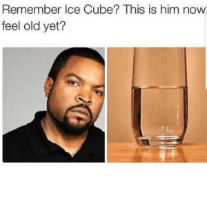 90s kids will remember by KevlarYarmulke FOLLOW 4 MORE MEMES.: Remember Ice Cube? This is him  feel old yet? 90s kids will remember by KevlarYarmulke FOLLOW 4 MORE MEMES.