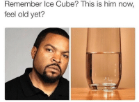 I'm feeling old (@will_ent): Remember Ice Cube? This is him now,  feel old yet? I'm feeling old (@will_ent)