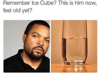 @icecube * 😏Follow if you're new😏 * 👇Tag some homies👇 * ❤Leave a like for Dank Memes❤ * Second meme acc: @cptmemes * Don't mind these 👇👇 Memes DankMemes Videos DankVideos RelatableMemes RelatableVideos Funny FunnyMemes memesdailybestmemesdaily boii Codmemes icecube ice Meme InfiniteWarfare Gaming gta5 bo2 IW mw2 Xbox Ps4 Psn Games VideoGames Comedy Treyarch sidemen sdmn: Remember Ice Cube? This is him now,  feel old yet? @icecube * 😏Follow if you're new😏 * 👇Tag some homies👇 * ❤Leave a like for Dank Memes❤ * Second meme acc: @cptmemes * Don't mind these 👇👇 Memes DankMemes Videos DankVideos RelatableMemes RelatableVideos Funny FunnyMemes memesdailybestmemesdaily boii Codmemes icecube ice Meme InfiniteWarfare Gaming gta5 bo2 IW mw2 Xbox Ps4 Psn Games VideoGames Comedy Treyarch sidemen sdmn