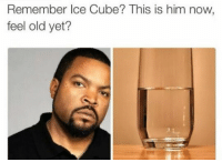 Feel old yet?: Remember Ice Cube? This is him now  feel old yet? Feel old yet?