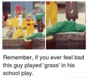 Bad, School, and Grass: Remember, if you ever feel bad  this guy played 'grass' in his  school play.
