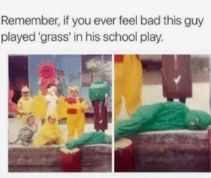Bad, Dank, and Memes: Remember, if you ever feel bad this guy  played 'grass' in his school play. meirl by Eli-Barlow MORE MEMES