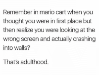 Facts, Funny, and Lol: Remember in mario cart when you  thought you were in first place but  then realize you were looking at the  wrong screen and actually crashing  into walls?  That's adulthood Facts lol