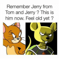 So that's what happened to him!??!?: Remember Jerry from  Tom and Jerry This is  him now. Feel old yet? So that's what happened to him!??!?