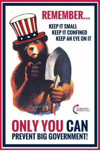 Memes, Government, and Big Government: REMEMBER.  KEEP IT SMALL  KEEP IT CONFINED  KEEP AN EYE ON IT  RNING  INT USA  ONLY YOU CAN  PREVENT BIG GOVERNMENT! YUP! Only YOU Can Prevent Big Government! #BigGovSucks