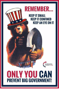 Memes, Government, and Big Government: REMEMBER.  KEEP IT SMALL  KEEP IT CONFINED  KEEP AN EYE ON IT  UININSA  INT USA  ONLY YOU CAN  PREVENT BIG GOVERNMENT!