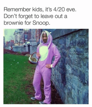 Snoop: Remember kids, it's 4/20 eve  Don't forget to leave out a  brownie for Snoop.