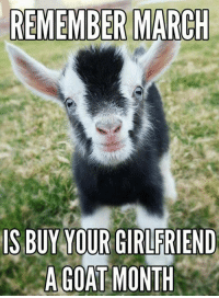 ~Tessa~: REMEMBER MARCH  IS BUY YOUR GIRLFRIEND  A GOAT MONTH ~Tessa~