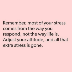 Life, All That, and Attitude: Remember, most of your stress  comes from the way you  respond, not the way life is.  Adjust your attitude, and all that  extra stress is gone.