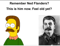"""<p>Jed Flalin via /r/memes <a href=""""http://ift.tt/2rJwG89"""">http://ift.tt/2rJwG89</a></p>: Remember Ned Flanders?  This is him now. Feel old yet? <p>Jed Flalin via /r/memes <a href=""""http://ift.tt/2rJwG89"""">http://ift.tt/2rJwG89</a></p>"""