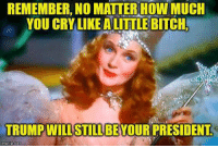little bitch: REMEMBER.NO  MATIERNOW  MUCH  YOU CRY LIKE A LITTLE BITCH  TRUMP WILL STILLBE YOUR PRESIDENT  imgflip.com