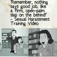Be a gentleman... merica usa republican democrat conservative libertarian liberal hillaryforprison feminism menimist likeasir: 'Remember nothing  says good job, like  a firm, open-palm  slap on the behind!  exual Harassment  Training Video Be a gentleman... merica usa republican democrat conservative libertarian liberal hillaryforprison feminism menimist likeasir