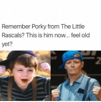 Memes, Old, and 🤖: Remember Porky from The Little  Rascals? This is him now... feel old  yet?  er  2  AS SHOPPED AS IT GETS