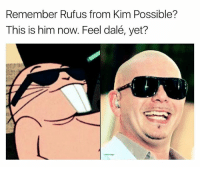 Kim Possible, Memes, and Amazing: Remember Rufus from Kim Possible?  This is him now. Feel dalé, yet? I always knew his gibberish is 🔥bars | 👉 @memegourmet is amazing