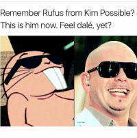 Kim Possible, Memes, and Sunday: Remember Rufus from Kim Possible?  This is him now. Feel dalé, yet? DALÉ YOUR SUNDAY!