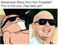 Kim Possible, Shit, and Gang: Remember Rufus from Kim Possible?  This is him now. Feel dalé yet? whole lotta gang shit over at @areuoffended
