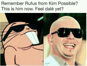 Kim Possible, Him, and Rufus: Remember Rufus from Kim Possible?  This is him now. Feel dalé yet? Aged like a fine cheddar