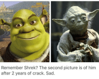 Ass, Dank, and Shrek: Remember Shrek? The second picture is of him  after 2 years of crack. Sad. First imma pull the wax outta ur ears, then I'm gonna make a candlestick out of it and shove it up your ass