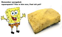 Spongebob Squarepants: Remember spongebob  squarepants? This is him now, Feel old yet?