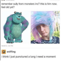 rawr xD *nuzzles u* uWu whats this :3 -a: remember sully from monsters inc? this is him now  feel old yet?  UU  10/28/14, 1:07 PM  sniffing  i think i just punctured a lung i need a moment rawr xD *nuzzles u* uWu whats this :3 -a