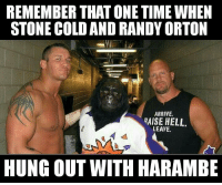:'(: REMEMBER THAT ONE TIME WHEN  STONE COLD AND RANDY ORTON  ARRIVE.  RAISE HELL.  LEAVE.  HUNG OUT WITH HARAMBE :'(