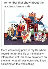 hallucinate: remember that show about the  ancient chinese cats  there was a long point in my life where  i could not for the life of me find any  information abt this show anywhere on  the internet and i was convinced i had  hallucinated the whole thing