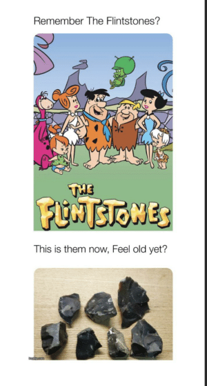 Remember them?: Remember The Flintstones?  THE  FUNTSTONES  This is them now, Feel old yet?  mgipcom Remember them?
