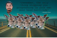 "Deer, Head, and Reddit: ""remember, the only  thing stopping you  progressing is your own  deer head barricade  Anonymous Donor <p>[<a href=""https://www.reddit.com/r/surrealmemes/comments/7kdfm3/inspirational_quote/"">Src</a>]</p>"