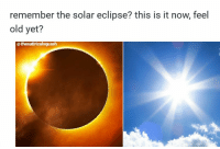 solar eclipse: remember the solar eclipse? this is it now, feel  old yet?  @ thesatiricalsquash