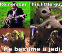 Jedi, Control, and Remember: Remember This little guy  He became a jedi These crossovers are getting out of control