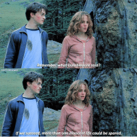 [ PrisonerOfAzkaban – 2004] — Q: What are your thoughts on the Prisoner of Azkaban movie?: Remember what Dumbledore said?  RSCENES  If we succeed more than one innocent life could be spared [ PrisonerOfAzkaban – 2004] — Q: What are your thoughts on the Prisoner of Azkaban movie?