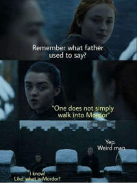 "laughoutloud-club:  Bean knows best: Remember what father  used to say?  ""One does not simply  walk into Mordor""  Ye  Weird man  I know  Like, what is Mordor? laughoutloud-club:  Bean knows best"