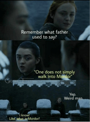 """memehumor:  Nice: Remember what father  used to say?  One does not simply  walk into Mordor""""  ID  Ye  Weird man  I know!  Like, what is Mordor? memehumor:  Nice"""