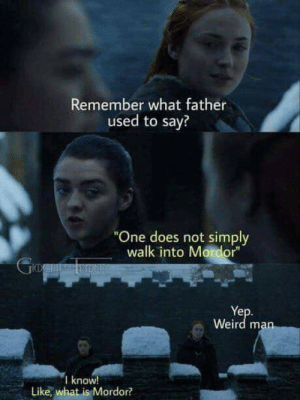 """One Does Not Simply Walk: Remember what father  used to say?  """"One does not simply  walk into Mordor""""  GogaeRON  Yep.  Weird man  I know!  Like, what is Mordor?"""