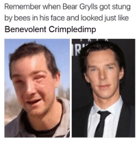 Bear, Bear Grylls, and Bees: Remember when Bear Grylls got stung  by bees in his face and looked just like  Benevolent Crimpledimp  R  ""