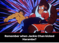 Haramber: Remember when Jackie Chan kicked  Harambe?