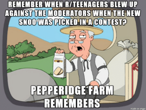 Remember, New, and Made: REMEMBER WHEN R/TEENAGERS BLEW UP  AGAINST THE MODERATORS WHEN THE NEW  SNOO WAS PICKED IN A CONTEST?  PEPPERIDGE FARM  REMEMBERS  made on inmgur Seems like almost everyone forgot about this