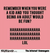 Being an Adult, Lol, and Pictures: REMEMBER WHEN YOU WERE  A KID AND YOU THOUGHT  BEING AN ADULT WOULD  BE FUN?  HAHAHAHAHAHAHA  HAHAHAHAHAHAHA  HAHAHAHAHAHAHA  LOL  The intemet Scavengers <p>Laugh out loud pictures  Wednesday funnies  PMSLweb </p>