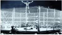 "A Dream, Comfortable, and Memes: REMEMBERING JIMMY SNUKA  Had it not been for this moment in time in October, 1983, it's highly unlikely that I would have created any moments at all within the world of professional wrestling/sports – entertainment. Jimmy Snuka created that moment for me - a moment that was about so much more than just an athletic dive from the top of a cage. It was professional wrestling as art, and Snuka that night was the consummate artist, painting on his own unique canvas in the most famous arena in the world. He painted with his body language, his intensity, his facial expressions - especially with those eyes - so that the slightest glance to the top of the cage created a literal buzz among the 20,000 in attendance - like a fuse being lit, leading to a powder keg of anticipation, resulting in the rarest of explosions; a crowd pop so loud and emotional that all I need do is close my eyes and I can hear it all over again, as real to me now as it was that night at The Garden over 30 years ago.  I am struggling with both the news of Jimmy's death, and the knowledge that he may have been responsible for the death of a young woman in his motel room in May, 1983. Unfortunately, the death of Nancy Argentino is inextricably entwined in the life-story of Jimmy ""Superfly"" Snuka, making the celebration of his life and career so much more difficult. I have been asked many times to comment on the matter, but haven't until now, simply because I didn't know what to say. I still don't. I hope that the final judgment of Jimmy Snuka will take into account the kindness with which he treated both fans and friends and the love he had for family and close friends. But Jimmy will likely be remembered as much for what allegedly took place on that one terrible night as he will be for his magnificent career. I don't know how to reconcile this man's heroic feats inside our world, with the tragedy he likely played a role in outside of it, but I have always found wisdom and comfort in these simple words from Bruce Springsteen: ""trust the art, not the artist"".   Art, at its best, inspires others to be something more than they could otherwise be. Spiritualist Thomas Merton famously wrote that ""art allows us to find ourselves and lose ourselves at the same time"". The masterpiece that Jimmy Snuka created that night at Madison Square Garden ultimately allowed me to do both those things. I would be a different man without the influence of Jimmy – a man without a dream; a man you likely would never have seen on your television screen. I remember vividly standing in all at MSG that night, hoping that one day I could do something that might make others feel the type of emotion I felt at that very moment. He was a true artist who inspired others to create moments that might stand the test of time – moments that might be remembered for years, decades even a lifetime. Thank you Jimmy Snuka for inspiring me."