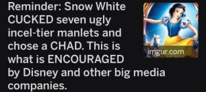baaulp: The world is full of amazing people.: Reminder: Snow White  CUCKED seven ugly  incel-tier manlets and  chose a CHAD. This is  imgur.com  what is ENCOURAGED  by Disney and other big media  companies. baaulp: The world is full of amazing people.