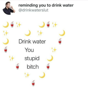 You Stupid: reminding you to drink water  @drinkwaterslut  Drink water  You  stupid  bitch