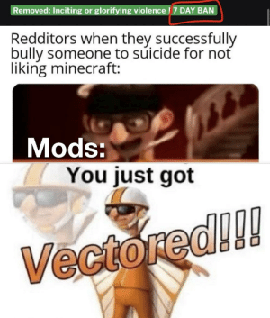 Imagine getting banned, couldn't be me: Removed: Inciting or glorifying violence | 7 DAY BAN  Redditors when they successfully  bully someone to súicide for not  liking minecraft:  Mods:  You just got  Vectored!!! Imagine getting banned, couldn't be me