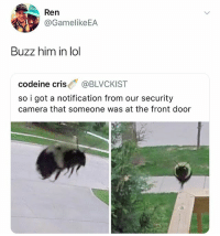 @hilarious.ted is by far the funniest animal memes page: Ren  2v.y @GamelikeEA  Buzz him in lo  codeine cris @BLVCKIST  so i got a notification from our security  camera that someone was at the front door @hilarious.ted is by far the funniest animal memes page